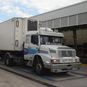 TBC semifosa - Báscula camionera