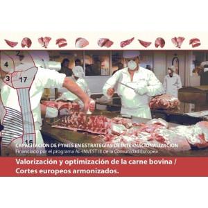 Capacitacion de Pequenas y Medianas Empresas en Estrategias de Internacionalización en América Latin
